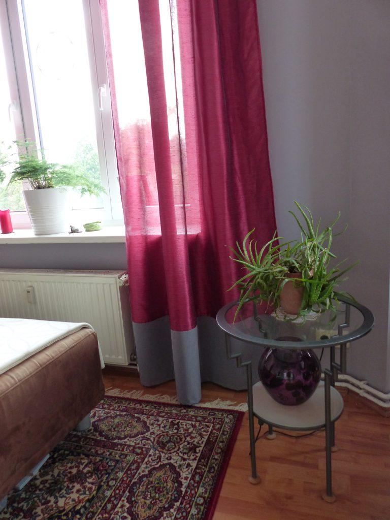 Wohnzimmer Blick 2 nachher mit Teppich und Blumentopf-Ständer