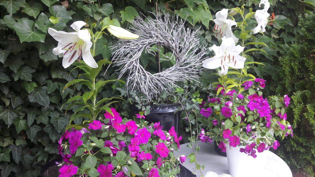4 weisse Madonnenlilien-Blüten und pinkfarbene fleissige Lieschen auf Marmortisch mit Zweig-Kranz