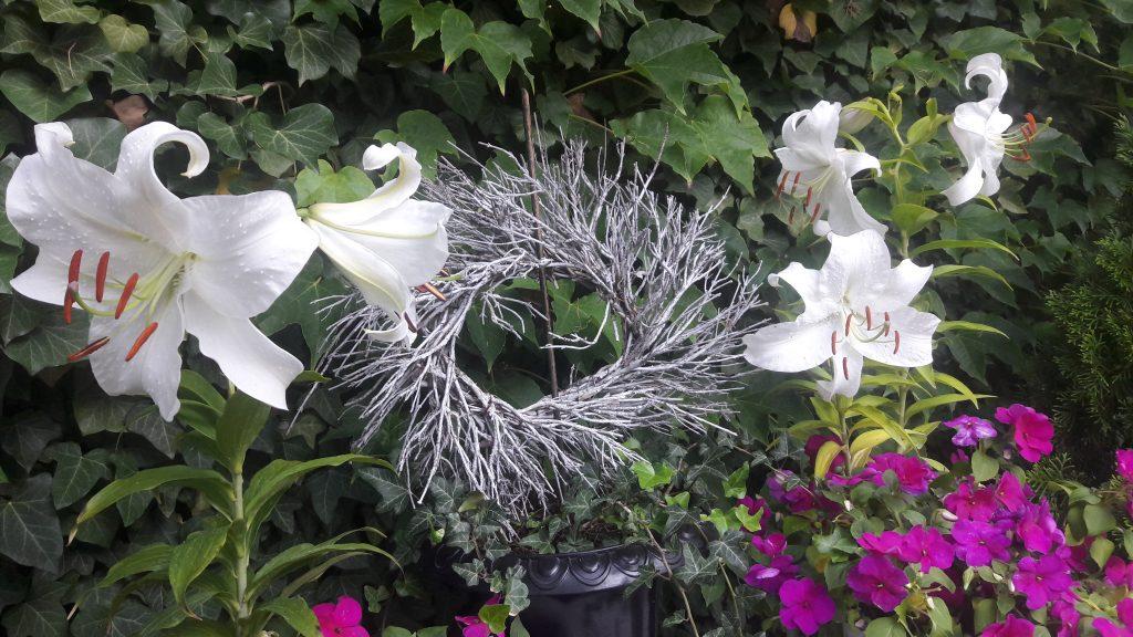 5 weisse Madonnenlilien-Blüten mit Zweig-Kranz