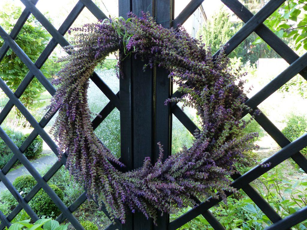 lila Sommersalbei im Garten-als Kranz gebunden am Holzzaun