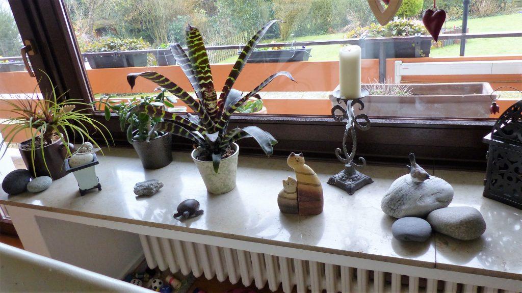 Internet-Wohnzimmer-vorher mit vielen bunt gemischten Dekoelementen und Topf-Pflanzen
