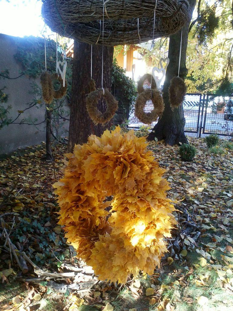 Üppiger Platanen-Blätterkranz unter Zweigekranz