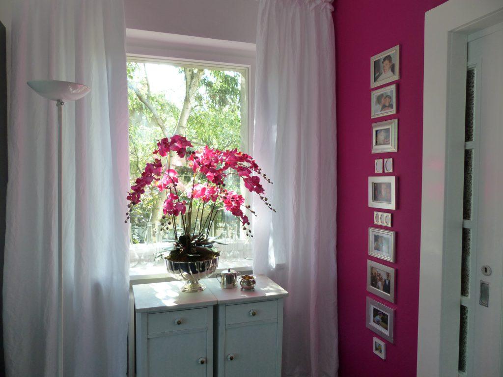 pinke Orchidee Fertig schöner Gesamteindruck